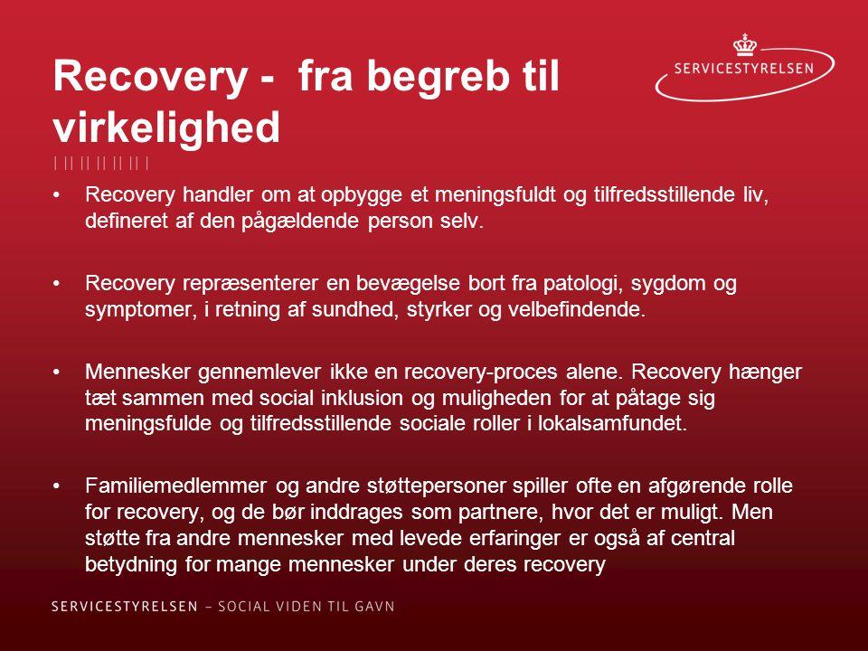 Recovery - fra begreb til virkelighed