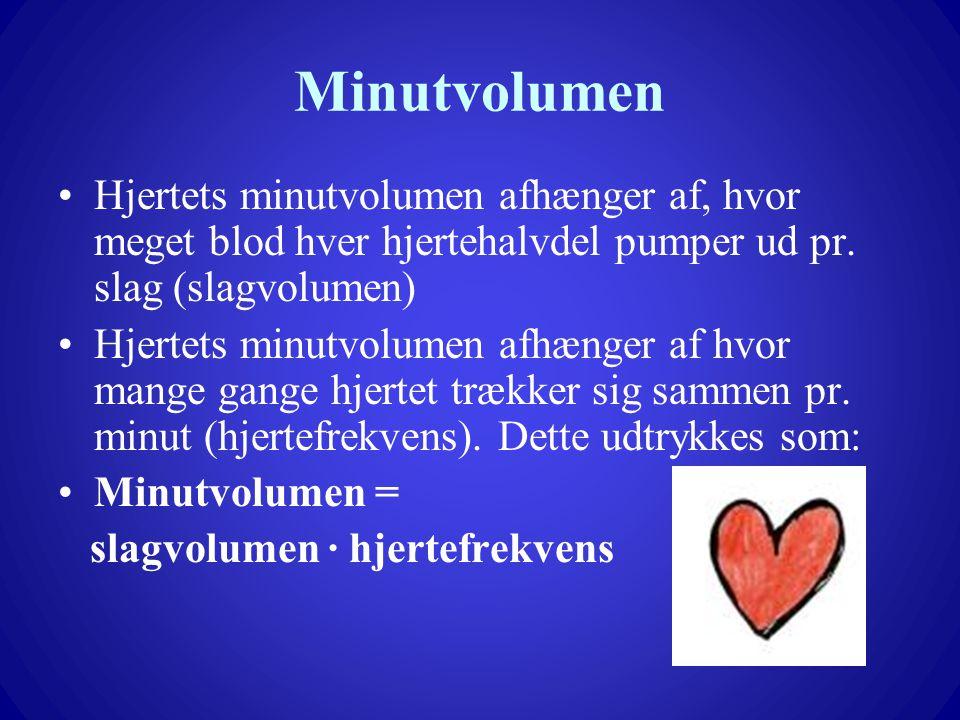 Minutvolumen Hjertets minutvolumen afhænger af, hvor meget blod hver hjertehalvdel pumper ud pr. slag (slagvolumen)