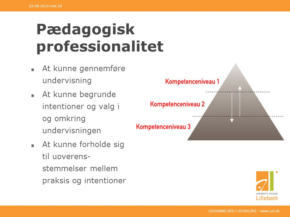 Pædagogisk professionalitet