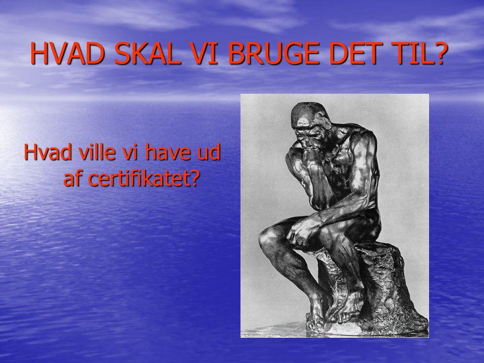 HVAD SKAL VI BRUGE DET TIL