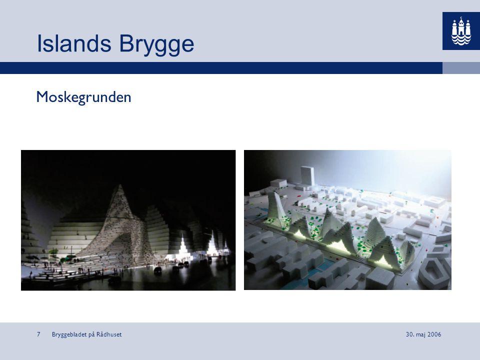Islands Brygge Moskegrunden Bryggebladet på Rådhuset 30. maj 2006