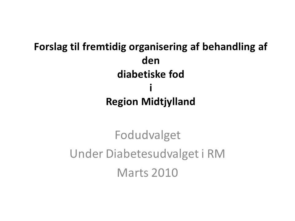 Fodudvalget Under Diabetesudvalget i RM Marts 2010