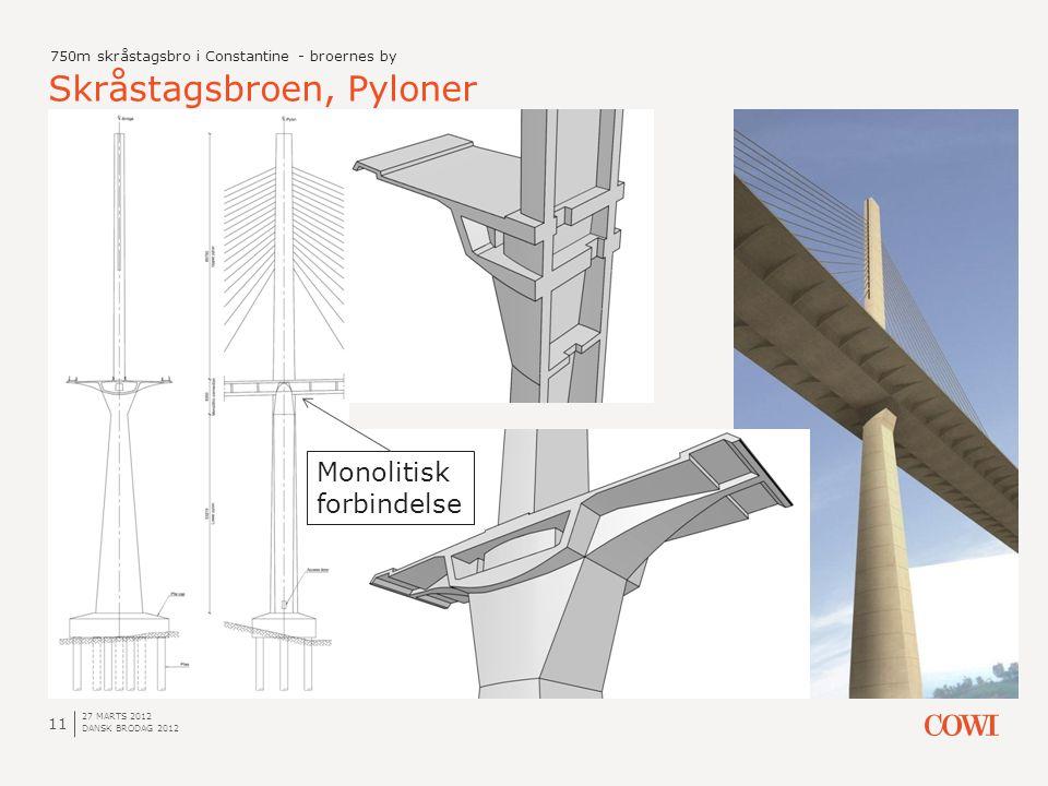 Skråstagsbroen, Pyloner
