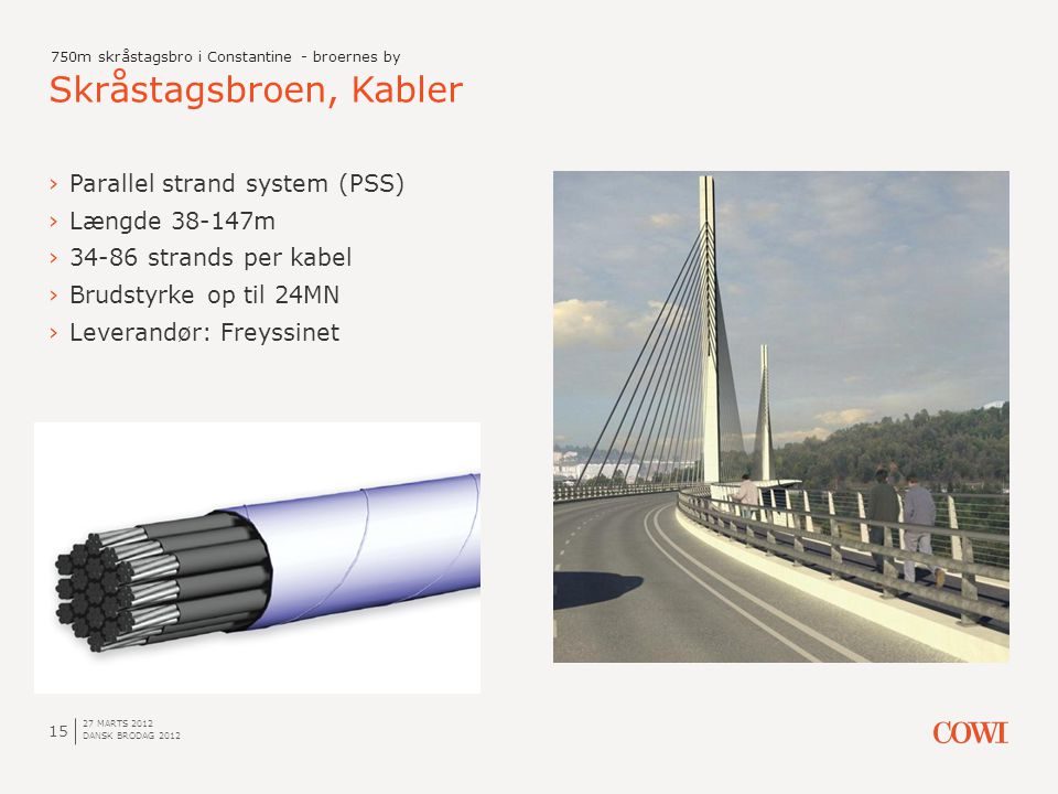 Skråstagsbroen, Kabler