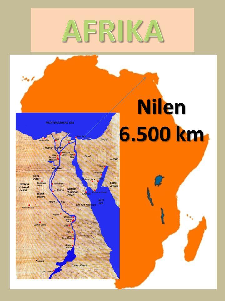 AFRIKA Nilen 6.500 km