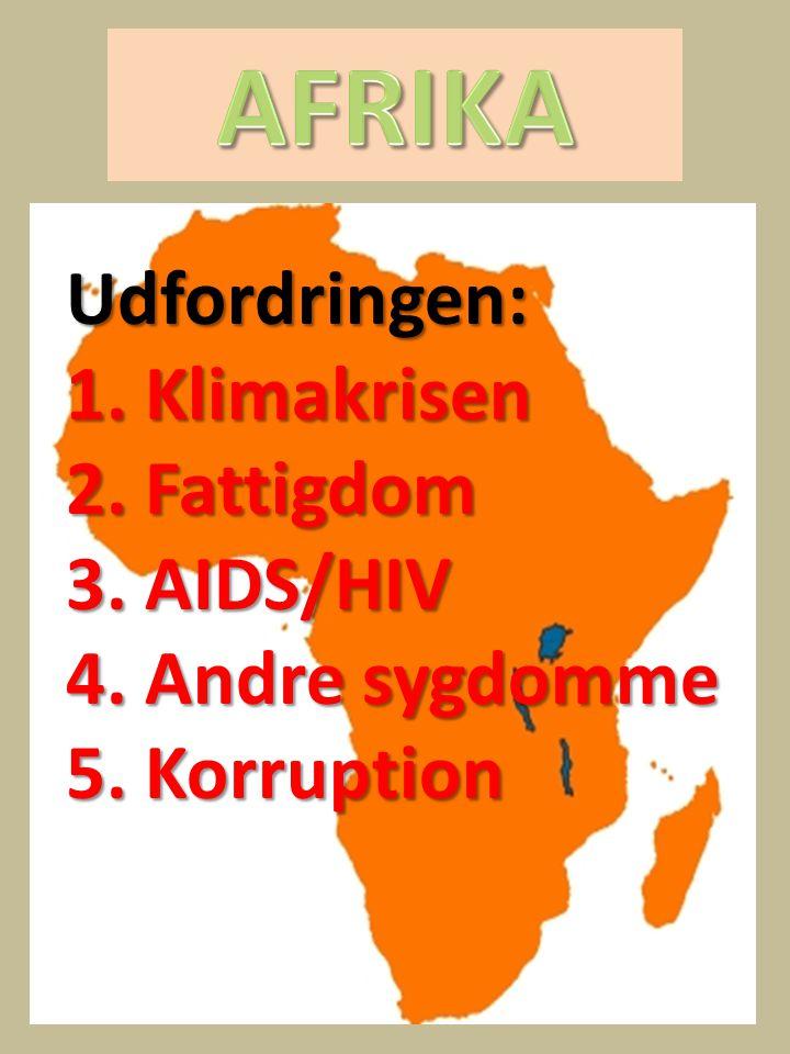 AFRIKA Udfordringen: 1. Klimakrisen 2. Fattigdom 3. AIDS/HIV