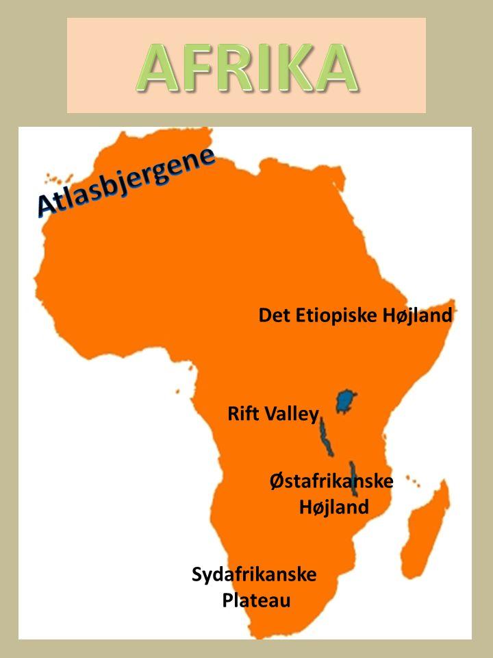 AFRIKA Atlasbjergene Det Etiopiske Højland Rift Valley Østafrikanske