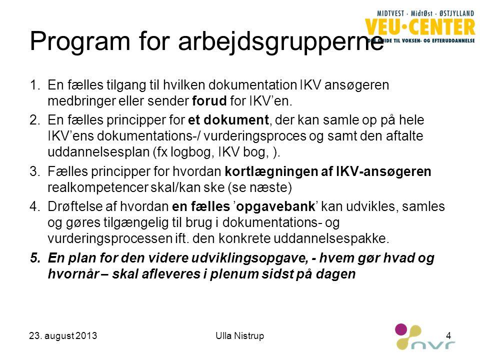 Program for arbejdsgrupperne