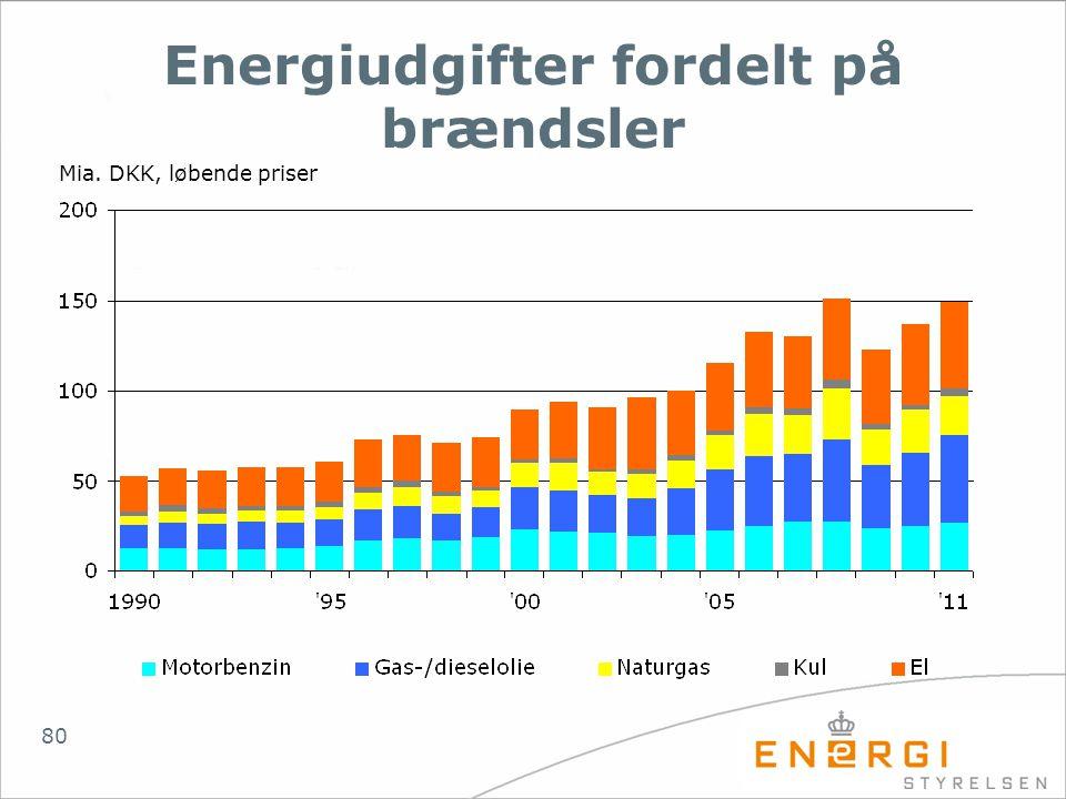 Energiudgifter fordelt på brændsler