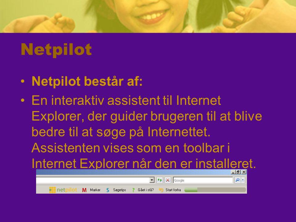 Netpilot Netpilot består af: