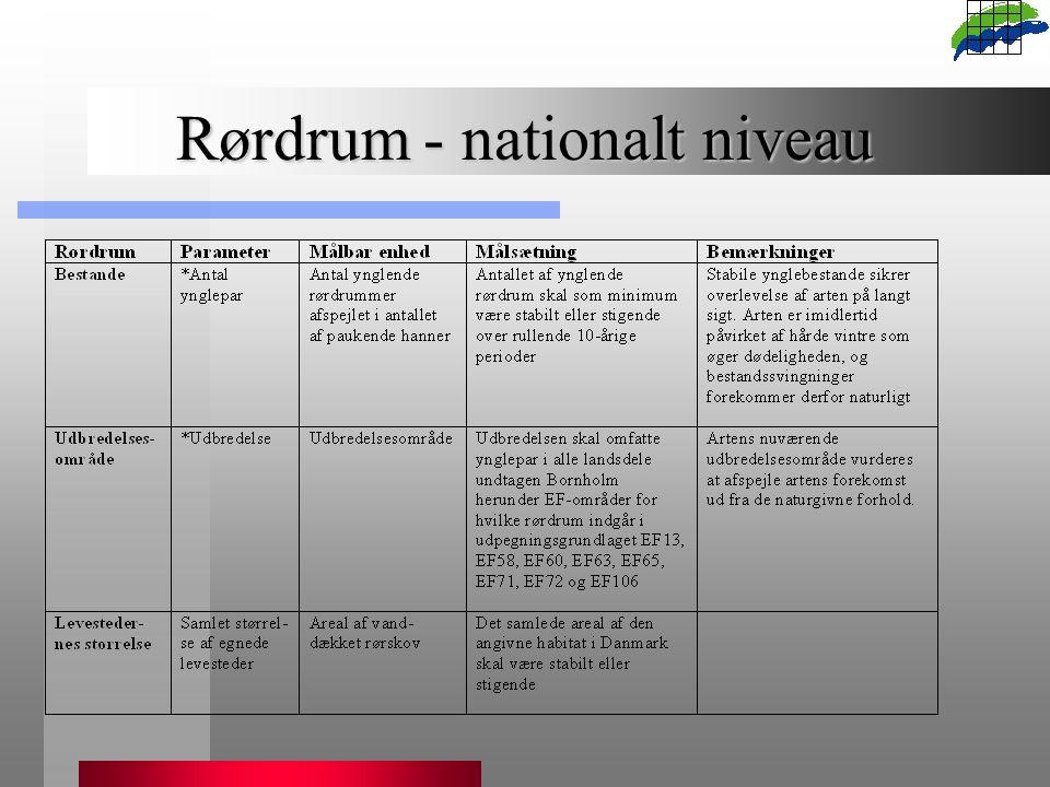 Rørdrum - nationalt niveau