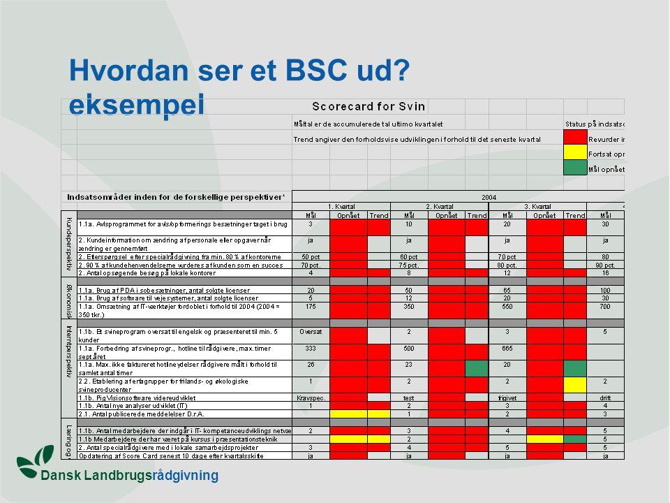 Hvordan ser et BSC ud eksempel