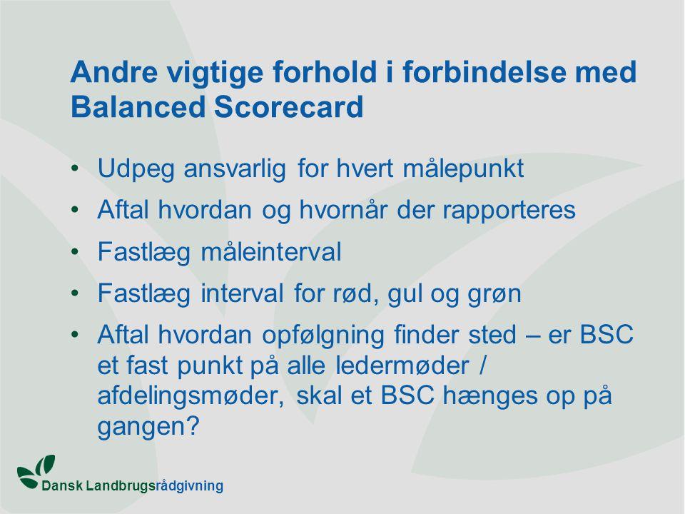 Andre vigtige forhold i forbindelse med Balanced Scorecard
