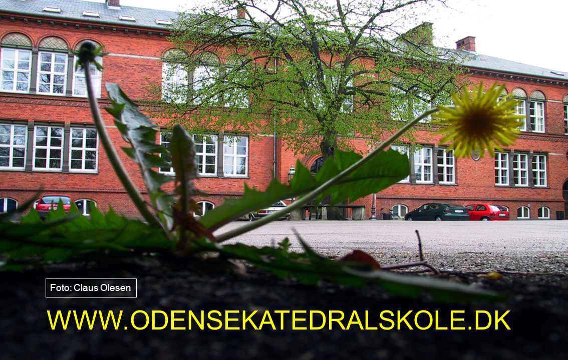 Foto: Claus Olesen WWW.ODENSEKATEDRALSKOLE.DK