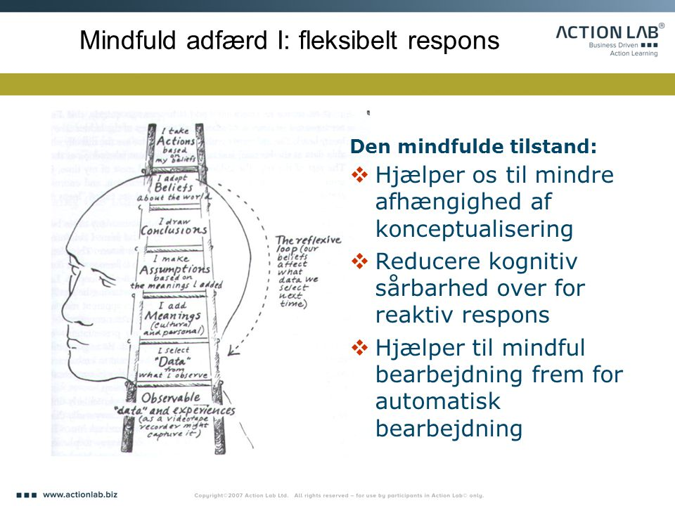 Mindfuld adfærd I: fleksibelt respons