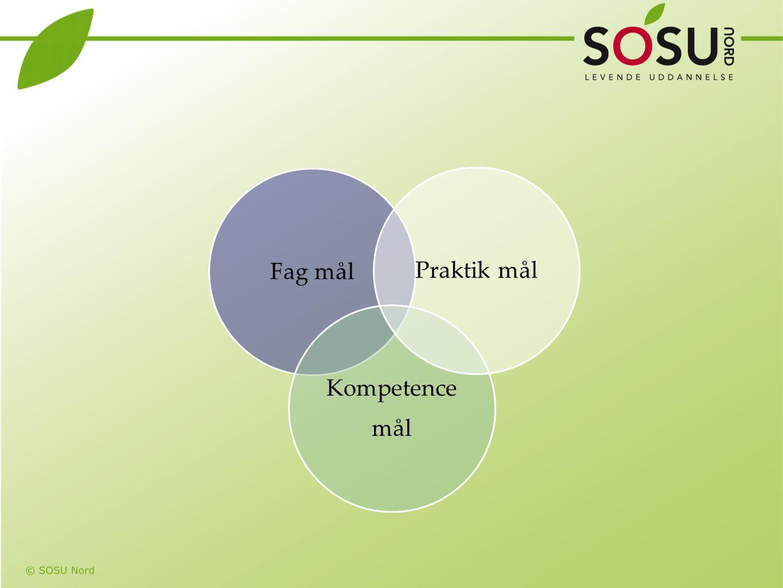 Fag mål Kompetence mål Praktik mål