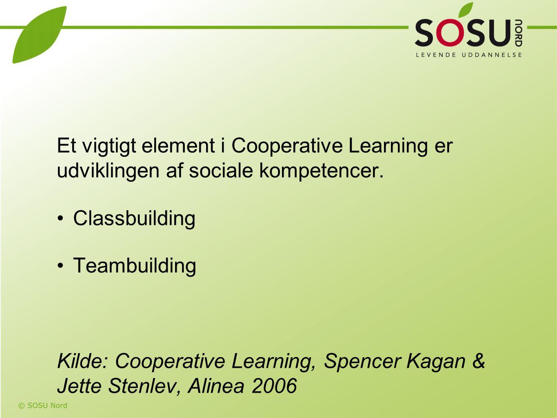 Et vigtigt element i Cooperative Learning er udviklingen af sociale kompetencer.
