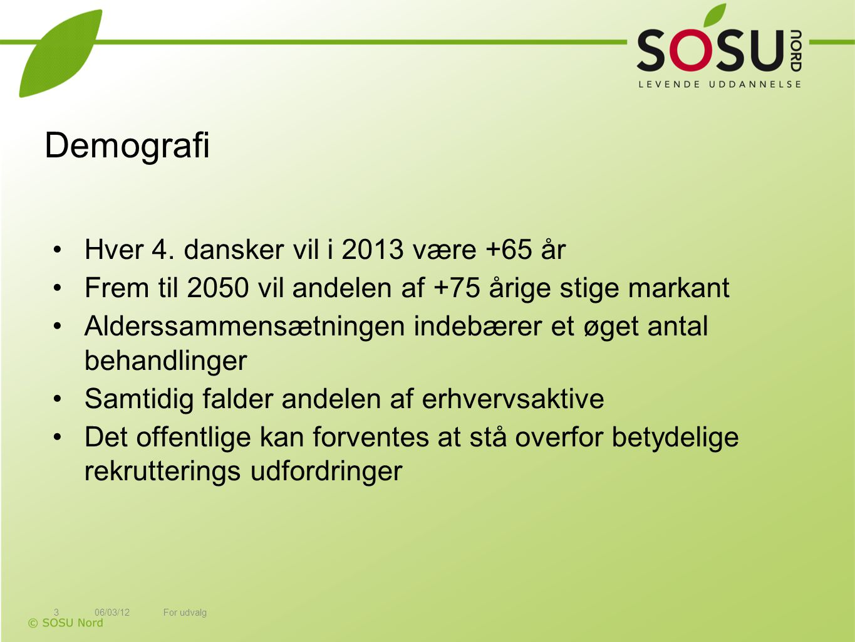 Demografi Hver 4. dansker vil i 2013 være +65 år