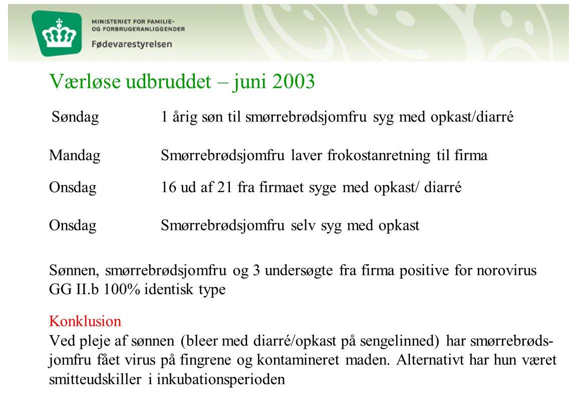 Værløse udbruddet – juni 2003 Søndag