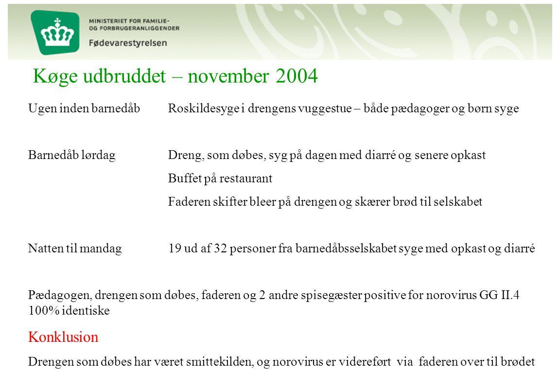 Køge udbruddet – november 2004