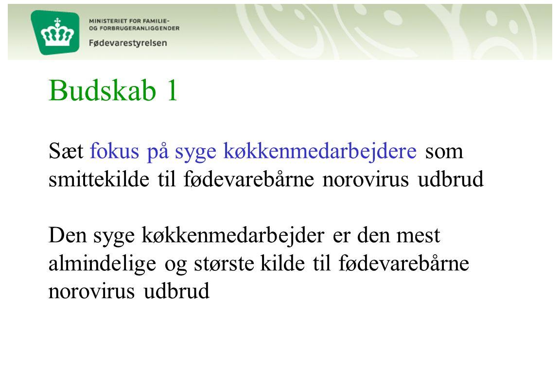 Budskab 1 Sæt fokus på syge køkkenmedarbejdere som smittekilde til fødevarebårne norovirus udbrud Den syge køkkenmedarbejder er den mest almindelige og største kilde til fødevarebårne norovirus udbrud