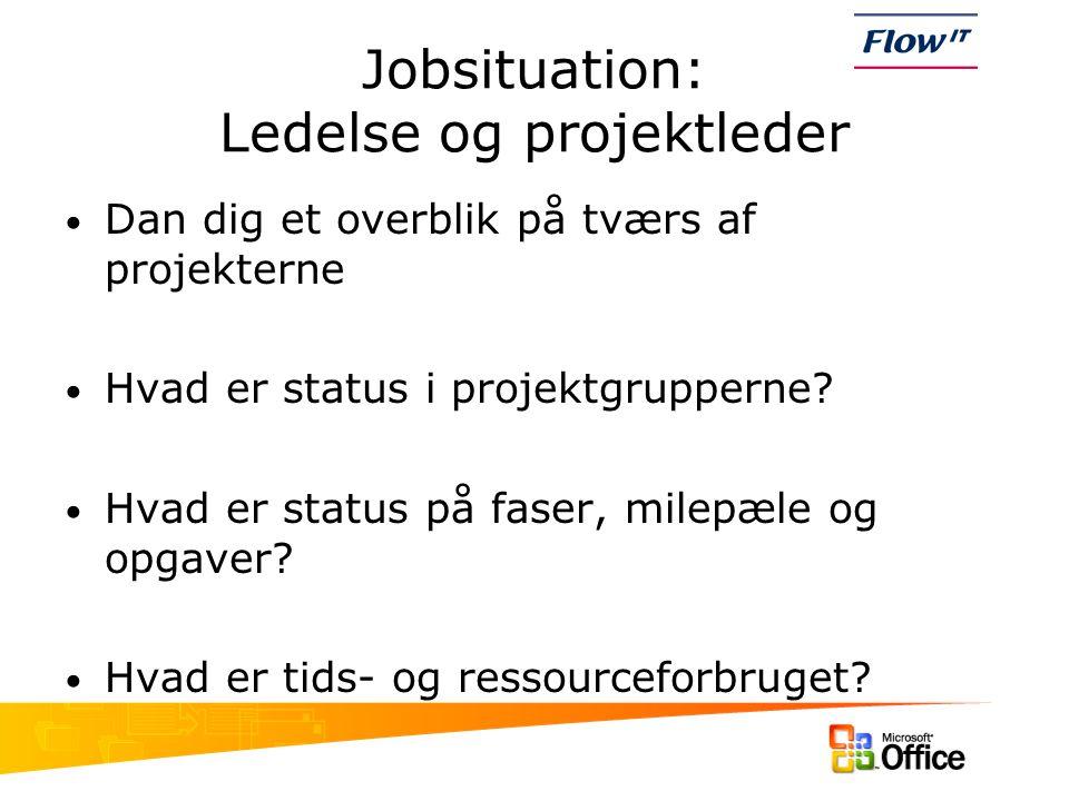 Jobsituation: Ledelse og projektleder