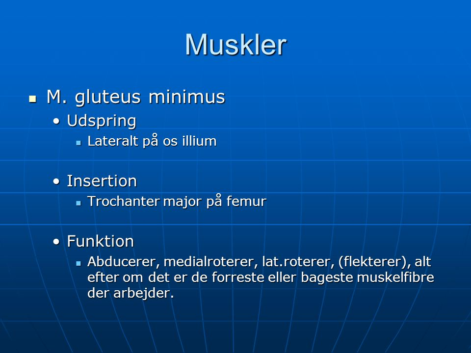 Muskler M. gluteus minimus Udspring Insertion Funktion