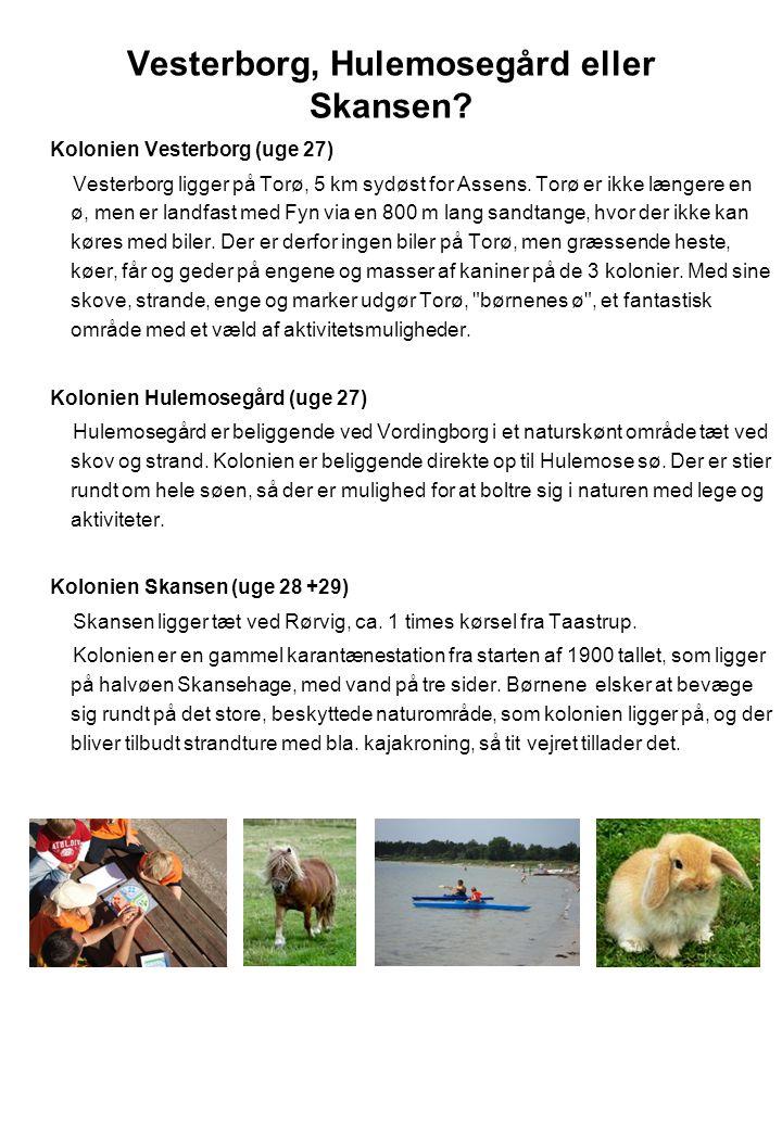 Vesterborg, Hulemosegård eller Skansen