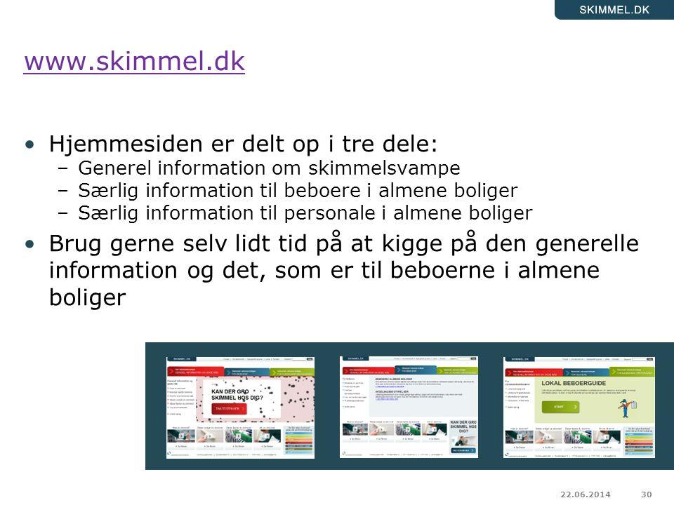 www.skimmel.dk Hjemmesiden er delt op i tre dele: