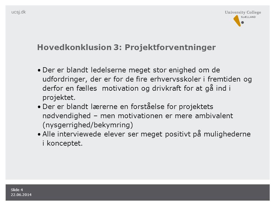 Hovedkonklusion 3: Projektforventninger