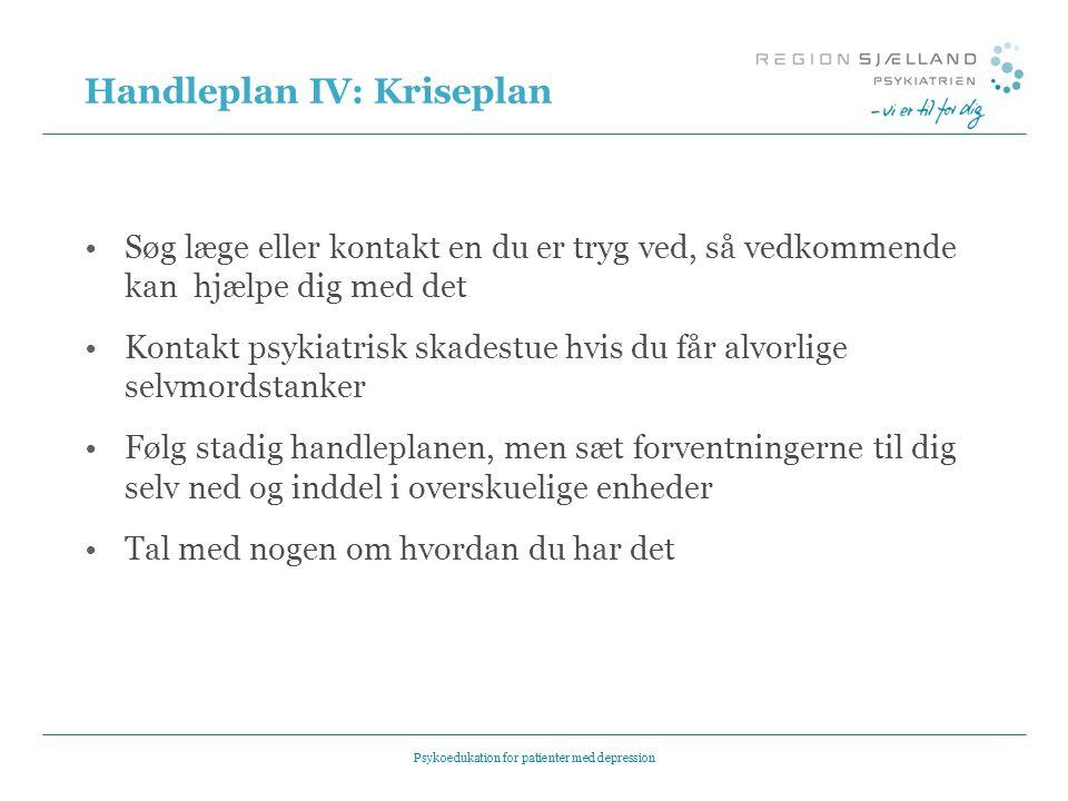Handleplan IV: Kriseplan