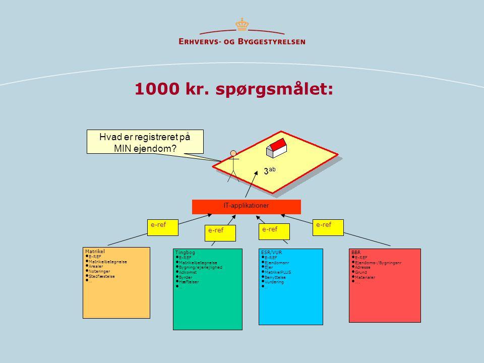 1000 kr. spørgsmålet: Hvad er registreret på MIN ejendom