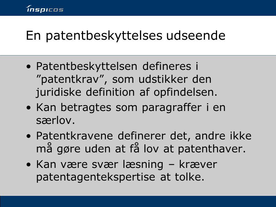 En patentbeskyttelses udseende