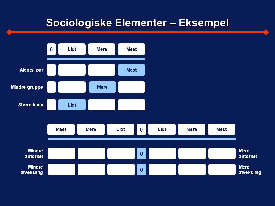 Sociologiske Elementer – Eksempel