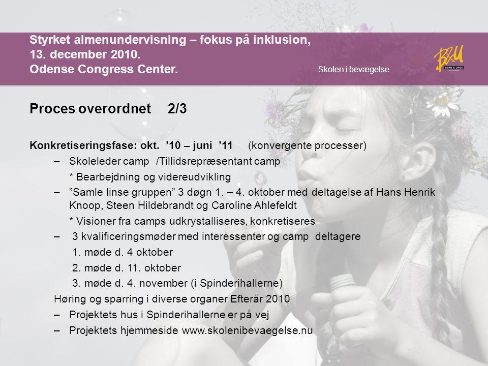 Styrket almenundervisning – fokus på inklusion, 13. december 2010