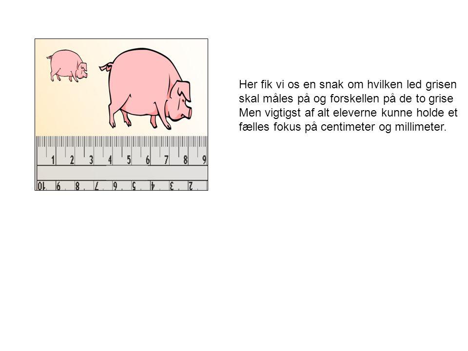 Her fik vi os en snak om hvilken led grisen skal måles på og forskellen på de to grise
