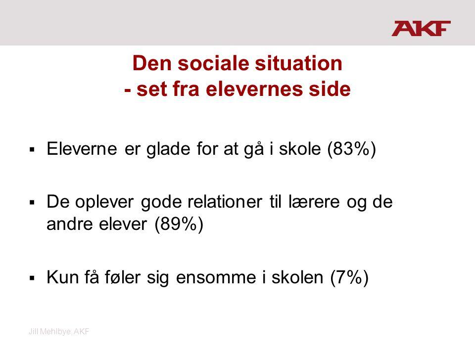 Den sociale situation - set fra elevernes side