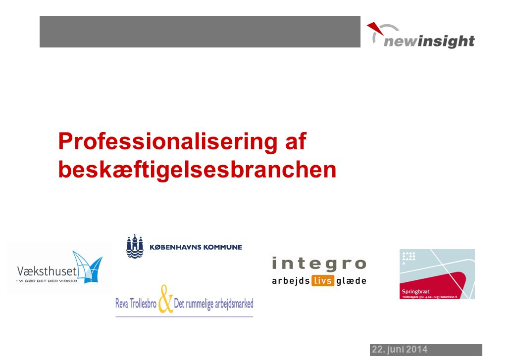 Professionalisering af beskæftigelsesbranchen