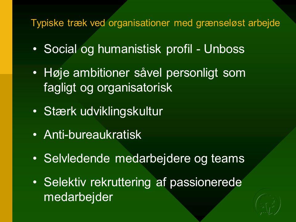 Typiske træk ved organisationer med grænseløst arbejde