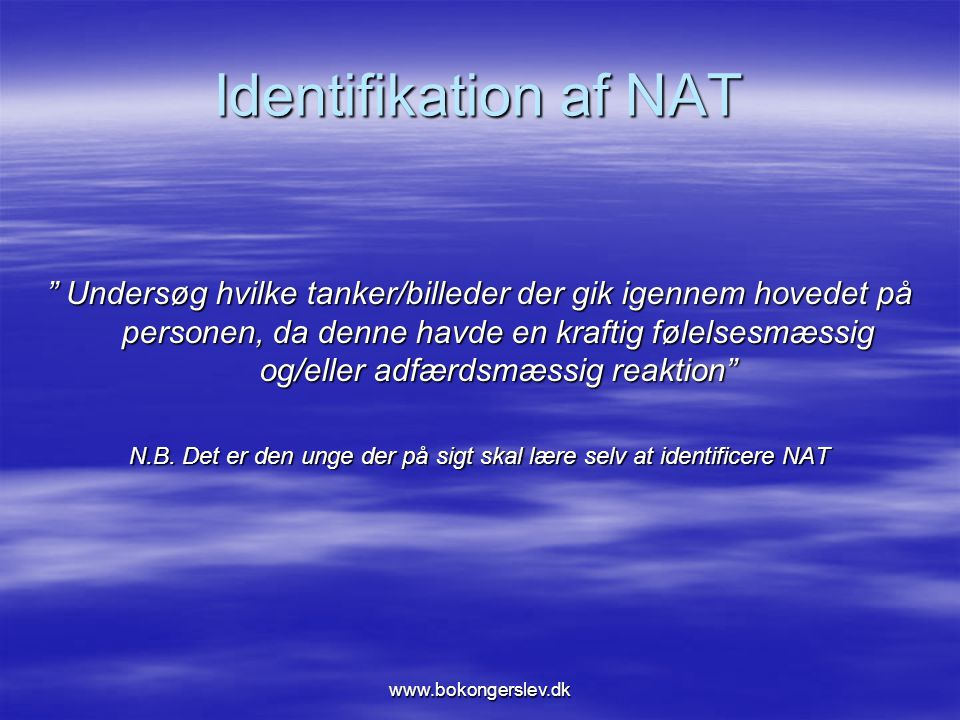 N.B. Det er den unge der på sigt skal lære selv at identificere NAT