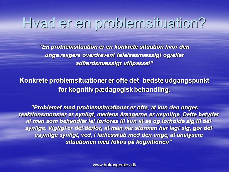 Hvad er en problemsituation