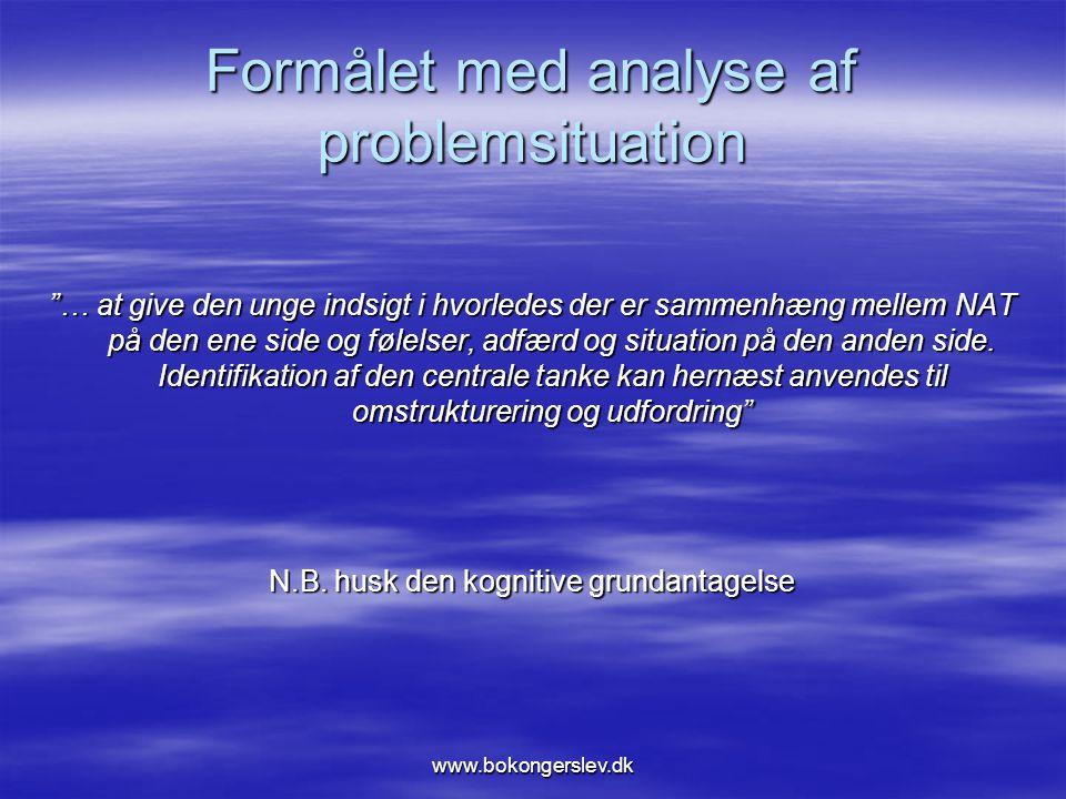 Formålet med analyse af problemsituation