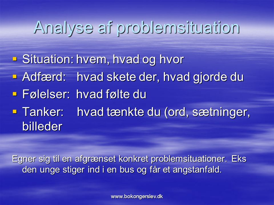 Analyse af problemsituation