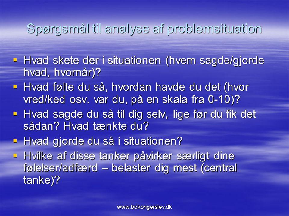 Spørgsmål til analyse af problemsituation