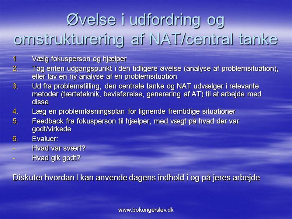 Øvelse i udfordring og omstrukturering af NAT/central tanke
