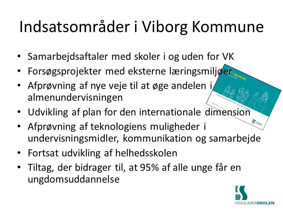 Indsatsområder i Viborg Kommune