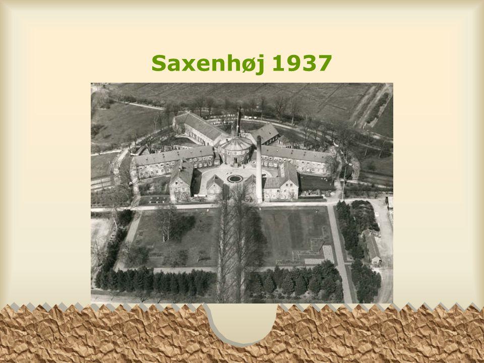 Saxenhøj 1937