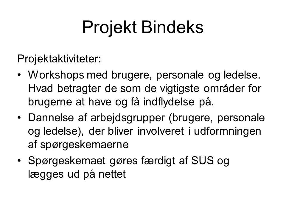 Projekt Bindeks Projektaktiviteter: