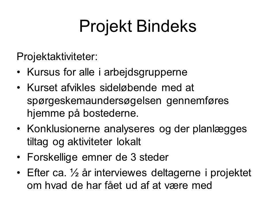 Projekt Bindeks Projektaktiviteter: Kursus for alle i arbejdsgrupperne