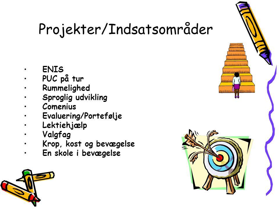 Projekter/Indsatsområder